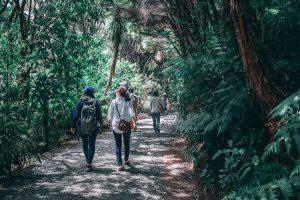 Mystagogy: A Journey with the Holy Spirit into Deeper Faith
